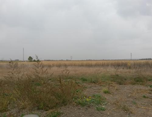 4 terrains disponibles en petit lotissement