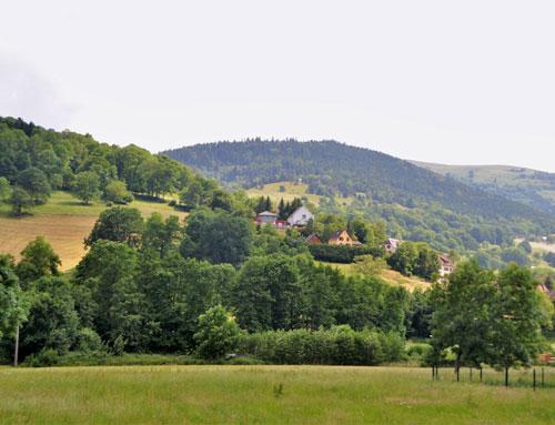 terrain vallée de Munster