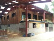 Extension Loft au dessus des box à chevaux