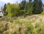 Terrain à Gerardmer de 778 m² en bordure de forêt