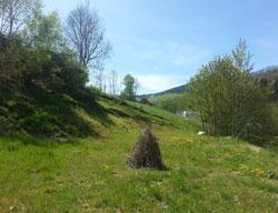 terrain 68650 - LE BONHOMME